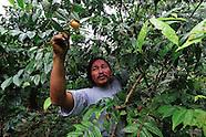 Mamallacta.  The nature's keepers / ECUADOR