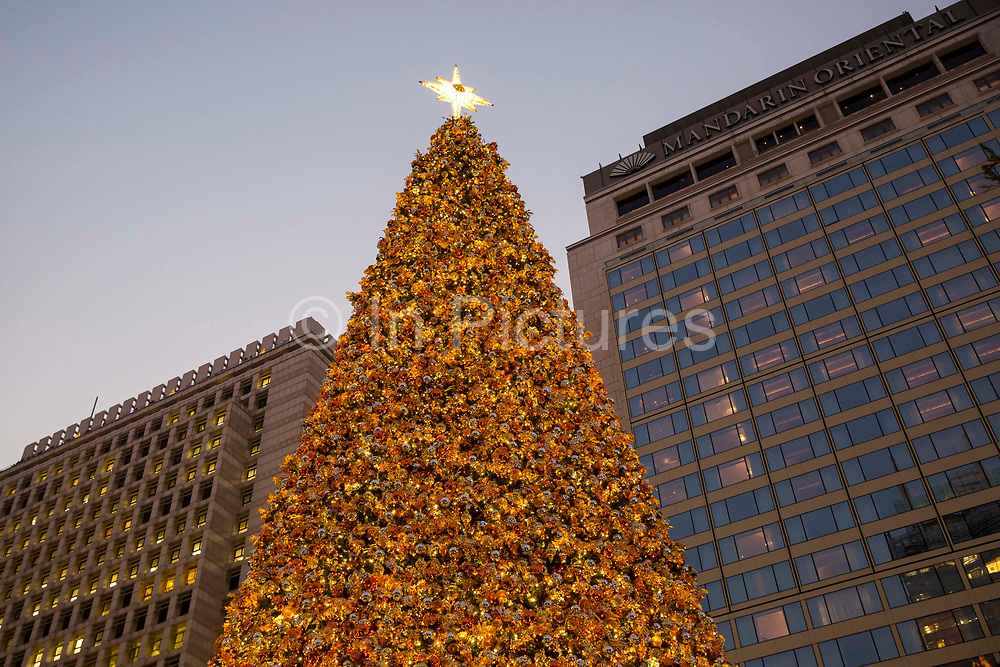 The colourful Hong Kong Christmas tree outside the Mandarin Hotel on Queen's Road Central, Hong Kong. The iconic Statue Square Christmas tree is 18 metres tall.