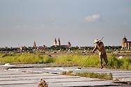 A vietnamese man collects salts on salt marsh, Nam Dinh province, Vietnam, Asia.