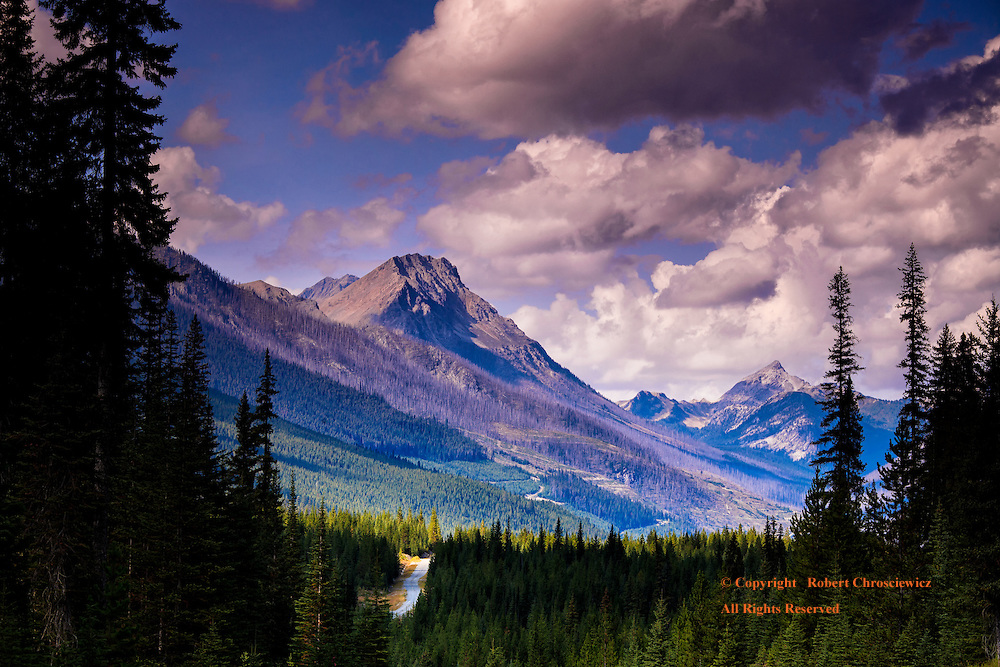 Forsyth Mountain: Summer and a winding gravel road breaks through the heavy evergreen forest, as one enters the Height of the Rockies Provincial Park, near Radium Hot Springs, British Columbia Canada.