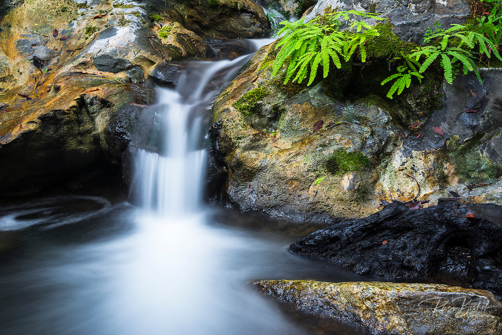 Cascade on Limekiln Creek, Limekiln State Park, Big Sur, California