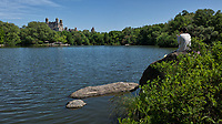 Smart phone wielding lady relaxing at The Lake in Central Park with a view of the Beresford apartment building.