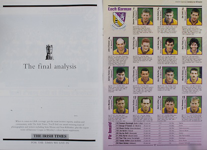 All Ireland Senior Hurling Championship - Final,.01.09.1996, 09.01.1996, 1st September 1996,.01091996AISHCF, .Wexford v Limerick,.Wexford 1-13, Limerick 0-14,.The Irish Times,..Wexford, Larry O'Gorman, Rod Guiney, Garry Laffan Adrian Fenlon, Larry Murphy, John O'Connor, Ger Cuch, Liam Dunne, Eamonn Scallan, Martin Storey captain, Damien Fitzhenry, Sean Flood, Tom Dempsey, Colm Kehoe, Rory McCarthy, subs, Seamus Kavanagh, George O'Connor, Shane Carley, Jim Byrne, Declan Ruth, Billy Byrne, Paul Finn, Tommy Kehoe, Dave Guiney,