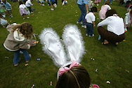 Adorned with bunny ears of her own, Madison McKee, 4, of Mission Viejo, searches for candy while hunting eggs during the 20th Annual Bunny Days at Oso Viejo Park in Mission Viejo Saturday April 10, 2004.