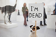 David Shrigley. New work etc. A stuffed dog holds up a placard reading 'I'm dead'.  Visitors and exhibitors at the many galleries exhibiting at the Frieze Art Fair 2010. This art fair is for work at the high end of international contemporary art with many well known artists on show from many of the world's most reknowned dealers.