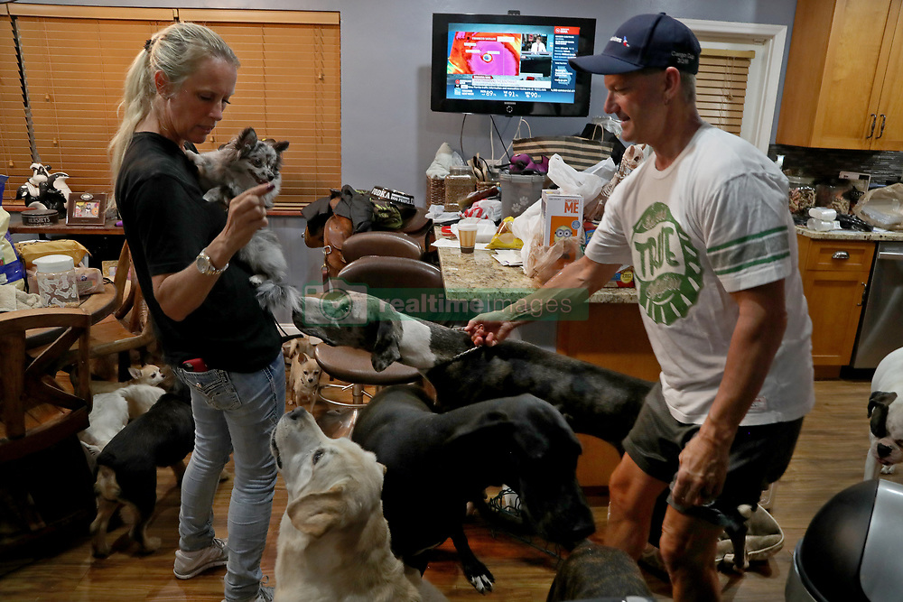 Gretchen and Ron Levine of A Paw Above in Hollywood are taking care of 20 dogs and 21 cats as they've been inundated with pet care requests by people fleeing Hurricane Irma. Photo by Susan Stocker/Sun Sentinel/TNS/ABACAPRESS.COM