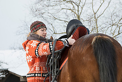 Young woman saddling her horse for riding in winter, Bavaria, Germany