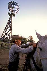 cowboy putting a saddle on a white horse