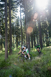 Mountain bikers riding in a forest, Ore Mountains, Saxony, Germany