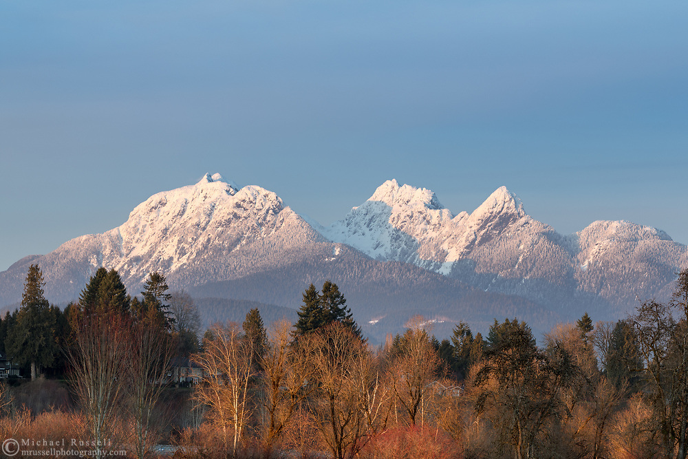 The Golden Ears and sunset light in the trees along the Fraser River in Langley, British Columbia, Canada.  Photographed from Derby Reach Regional Park at Meunch Bar.
