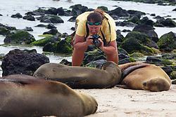 Kristina Timmerman Photographing Galápagos Sea Lion, San Cristóbal