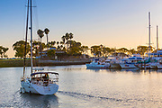 Sunset Sailing Through Dana Point Harbor