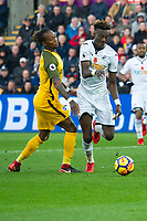 Football - 2017 / 2018 Premier League - Swansea City vs. Brighton & Hove Albion<br /> <br /> Tammy Abraham of Swansea City breaks the defence but fails to take a chance at goal & is defied by Mat Ryan of Brighton and Hove Albion at The Liberty Stadium.<br /> <br /> COLORSPORT/WINSTON BYNORTH