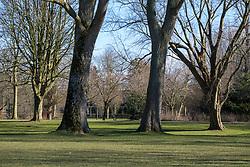 Amsterdam Zuidas Beatrixpark, Noord Holland, Netherlands