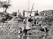 A shaduf in Egypt in the 1880s.  The shaduf was used to raise water for irrigation at least as early as 1,500 BC.   Photograph.