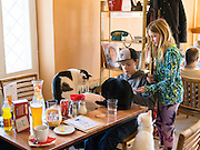 Visitors enjoy the offerings at the Cat Cafe, Vilnius, Lithuania.