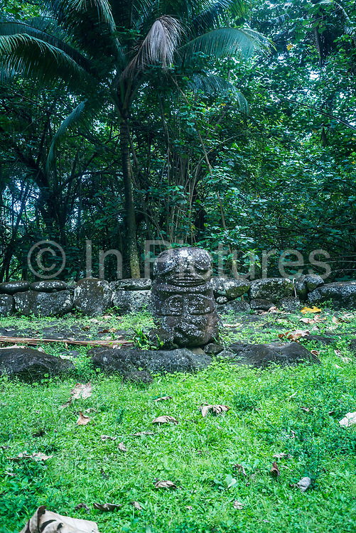 A stone tiki or human-like statue at the archaeological site of Hikokua near the village of Hatiheu, Nuku Hiva, Marquesas Islands, French Polynesia.<br /> Discovered by the archaeologist Robert Suggs in 1957, it dates from around AD 1250 and was in use until the 1800s.