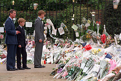 The Prince of Wales and his sons Prince William (right) and Prince Harry, view the sea of floral tributes to their mother, Diana, Princess of Wales, at Kensington Palace.