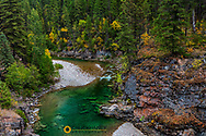 The Spotted Bear River in the Flathead National Forest, Montana, USA