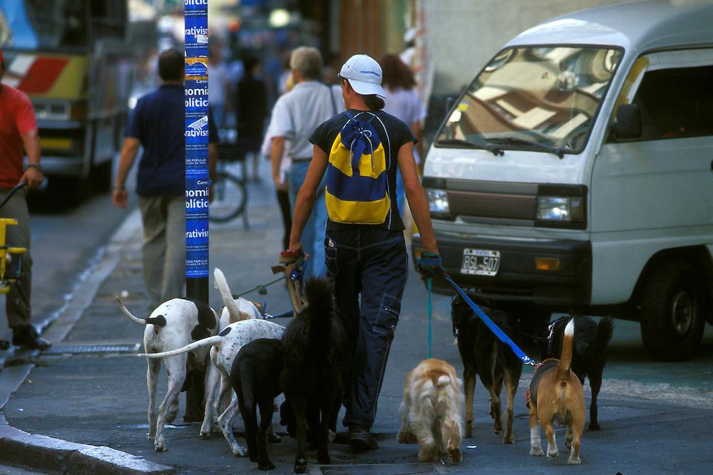 ARGENTINA/ BUENOS AIRES/ centro de la ciudad. Los paseadores de perros son un clásico de la ciudad...ARGENTINA/ BUENOS AIRES/ Downtown. There are many people dedicated to walk  dogs of the neighbours.