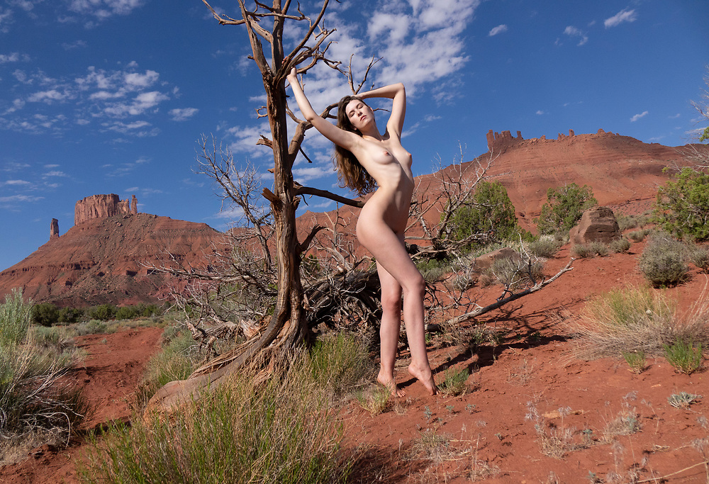 Nude woman posing with a dead tree in the Professor valley, Moab, Utah