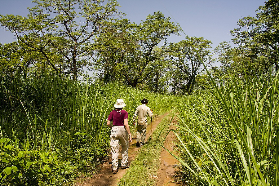 Liana Welty follows her wildlife guide down a jeep track flanked by high grasses in Royal Chitwan National Park, Terai, Nepal.