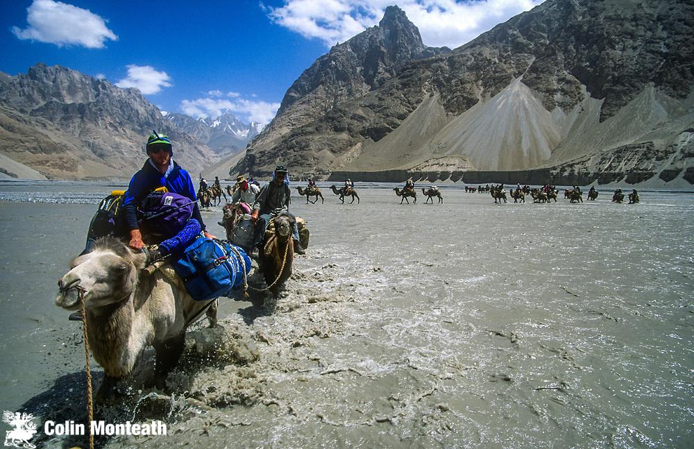 Bactrian camel caravan crosses Shaskgam river en route Suget Jangal, Chongtar expedition 1994, Karakoram mtns, far western China, Central Asia.