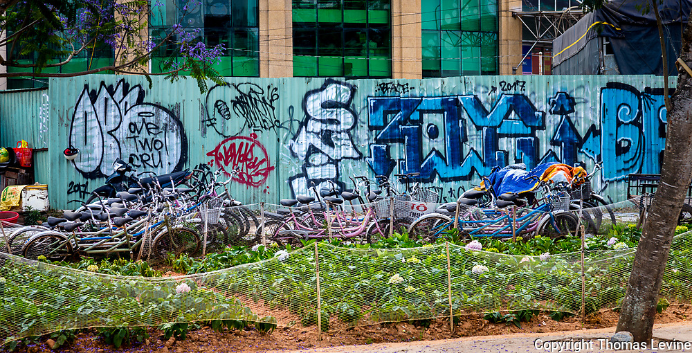 Close to Xuan Huong Lake where people park their bicycles in front of a blue graffiti wall. A flower farm field in front by the street.