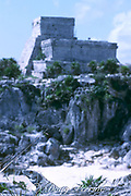 iguana in front of the Temple of the Wind, Mayan ruins at Tulum, Quintana Roo, Yucatan Peninsula, Mexico ( Caribbean )