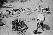 MALI. T'in Amaskor. 1/02/1987: Seasonal well with a depth of 4 meter. Ten minutes are necessary to fill a bucket of 5 liter.