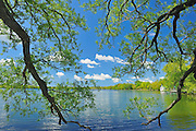 Lake on The Mountain in Prince Edward County.<br /> Lake on the Mountain Provincial Park<br /> Ontario<br /> Canada
