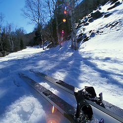 Cross country skis on the Carriage Roads next to Jordan Pond and the Bubbles.  Acadia N.P., ME.