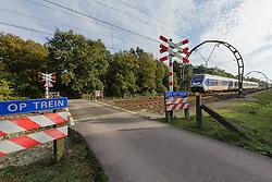 Laapersheide GNR, Hilversum, Noord Holland, Netherlands