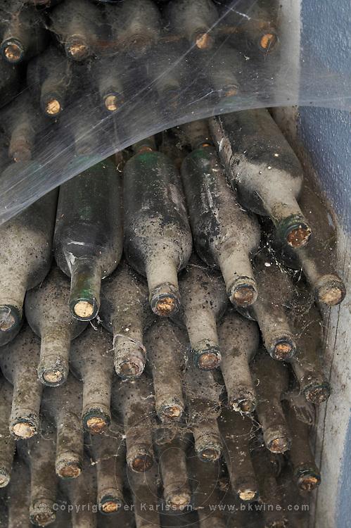 1970 Rosado old bottles in the cellar , Bodegas Otero, Benavente spain castile and leon
