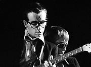 Elvis Costello in concert London 1981