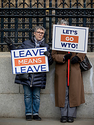 "© Licensed to London News Pictures. 13/03/2019. London, UK. Two pro-Brexit demonstrators outside Parliament as MPs continue to debate a series of key votes on Brexit. MPs will vote on whether to remove the option of a ""no deal"" departure from the EU today, after Prine Minister Theresa May's proposed deal was defeated for a second time last night. Photo credit: Rob Pinney/LNP"