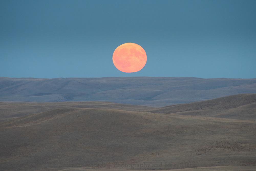 Blood Moon, Blackfeet Reservation, Montana