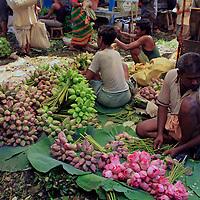 Asia, India, Calcutta. Lotus vendor in the flower market in Calcutta.