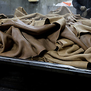 Santa Croce Sull'Arno, Italy. Italcuoio tannery SPA. Leather extracted from tannery drums after the 're-tanning' step.