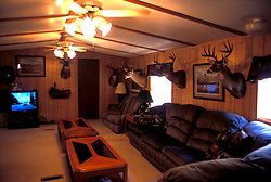 Stock photo of many stuffed animal heads on the walls of a hunting cabin