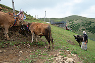 Ayla, 12, (left) and Muazzez Kocek (right) in their village of Alaca Yaylası, high up in Turkey's Pontic mountains. Ayla understands the whistling language, although doesn't often use it herself.