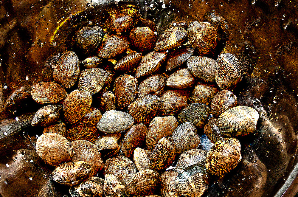 A batch of clams for my supper.