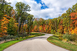 Autumn closes in around this winding road as the vibrant fall colors start to peek out from the framed foliage.