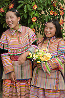 Flower Hmong girls with a bouquet of yellow roses.  Hmong groups began a gradual southward migration from China due to unrest and to find more arable land - as a result  Hmong now live in several countries in Southeast Asia including Vietnam, Laos, Thailand and Burma.  There are various types of Hmong throughout Southeast Asia, including the Flower Hmong shown here, named after the styles of their clothing and costumes.