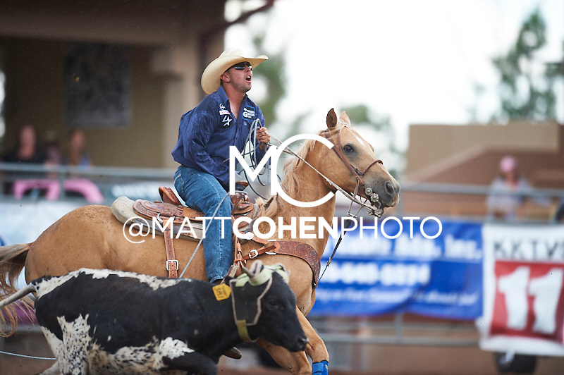 Team roper Clay Norell of Delta, CO competes at the Pikes Peak or Bust Rodeo in Colorado Springs, CO.<br /> <br /> <br /> UNEDITED LOW-RES PREVIEW<br /> <br /> <br /> File shown may be an unedited low resolution version used as a proof only. All prints are 100% guaranteed for quality. Sizes 8x10+ come with a version for personal social media. I am currently not selling downloads for commercial/brand use.