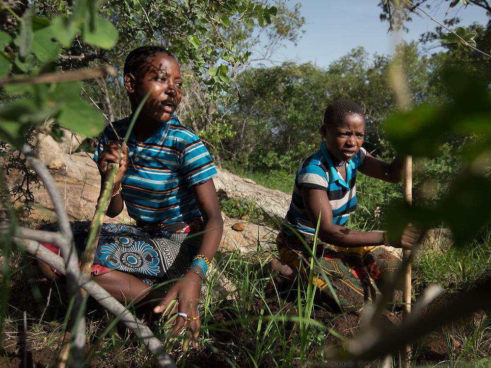 Collecting tubers - two Hadza sisters, Maggie Tomas (left) and Esta Tomas (right). The Hadza camp of Senkele.The Hadza camp of Senkele.