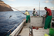 Tuna Fishing is one of the activity on the island. The fish industry collapsed few years ago and now fishermen get fish just for the local market