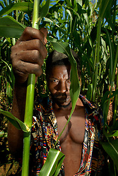Ahmad Libanda stands in the corn field where his son Hasan Ahmad was killed by a lion in Nkung'uni  village. Ami Vitale