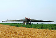 Israel, Negev, Potato field being sprayed with insecticide with a tractor