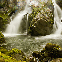 Seasons of Torres del Paine